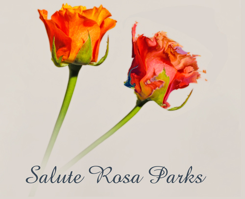 rosaparks_web