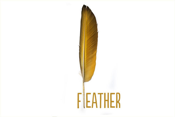 a golden feather with the word feather