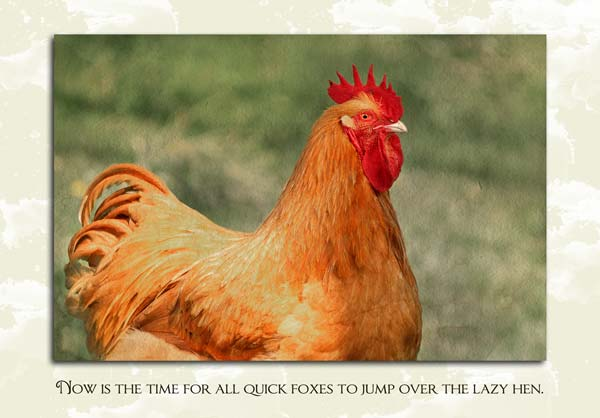 Now is the time for all quick foxes to jump over the lazy hen.
