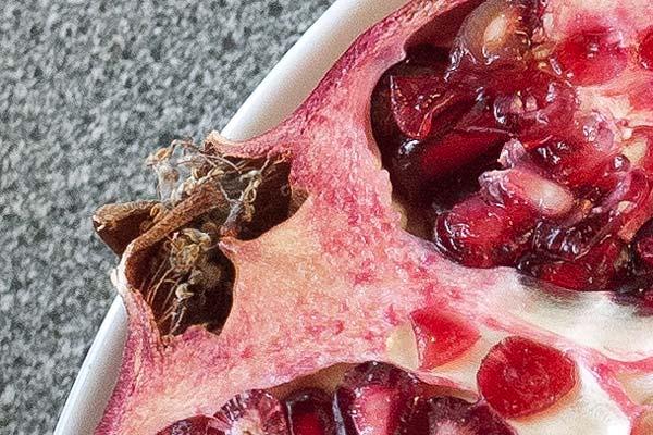 pomegranate close-up