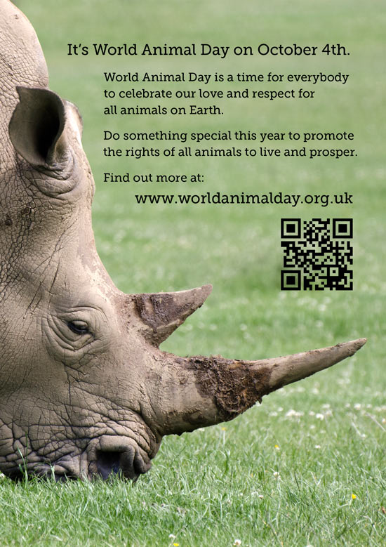 The front of the White rhino card we made to support World Animal Day - showing a rhino with text about WAD