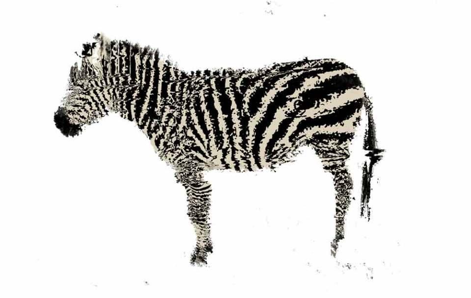 zig-zag-zebra