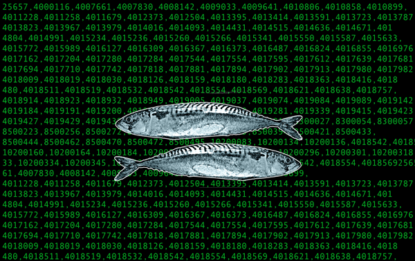 Matrix machine code with trout