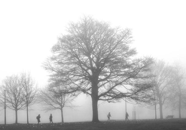 edinburgh-mist