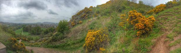 panoramic view of the Hermitage Of Braid, Edinburgh