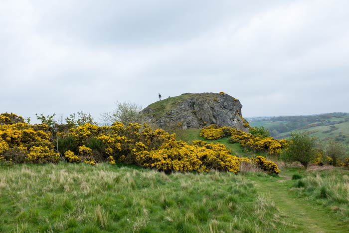 Rocky outcrop - Hermitage of Braid, Edinburgh
