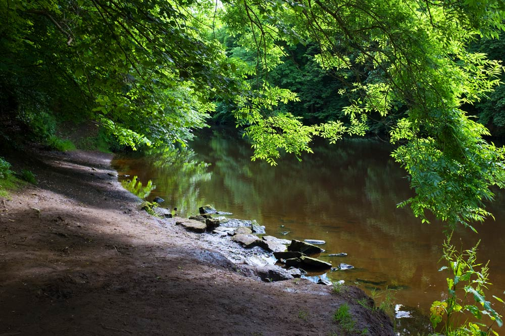 river-almond-above-crammond