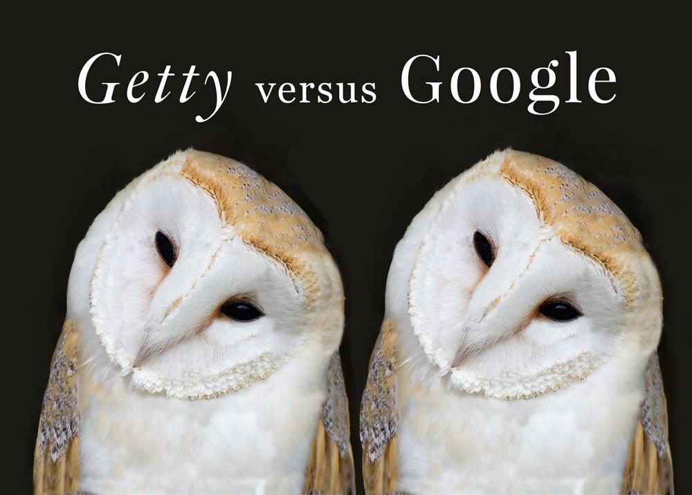 two barn owls illustrating getty versus google