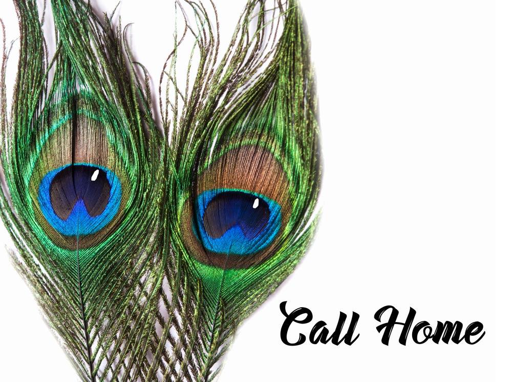 Call-home