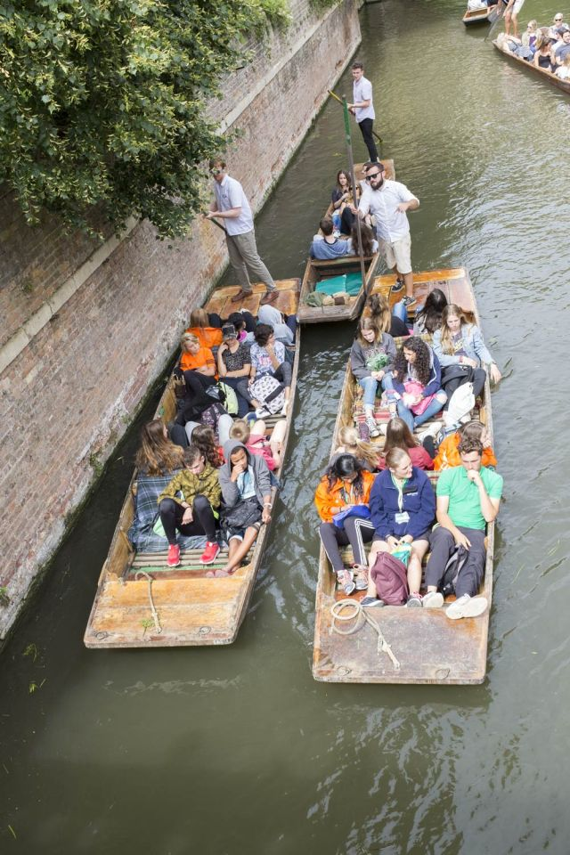 people in punts
