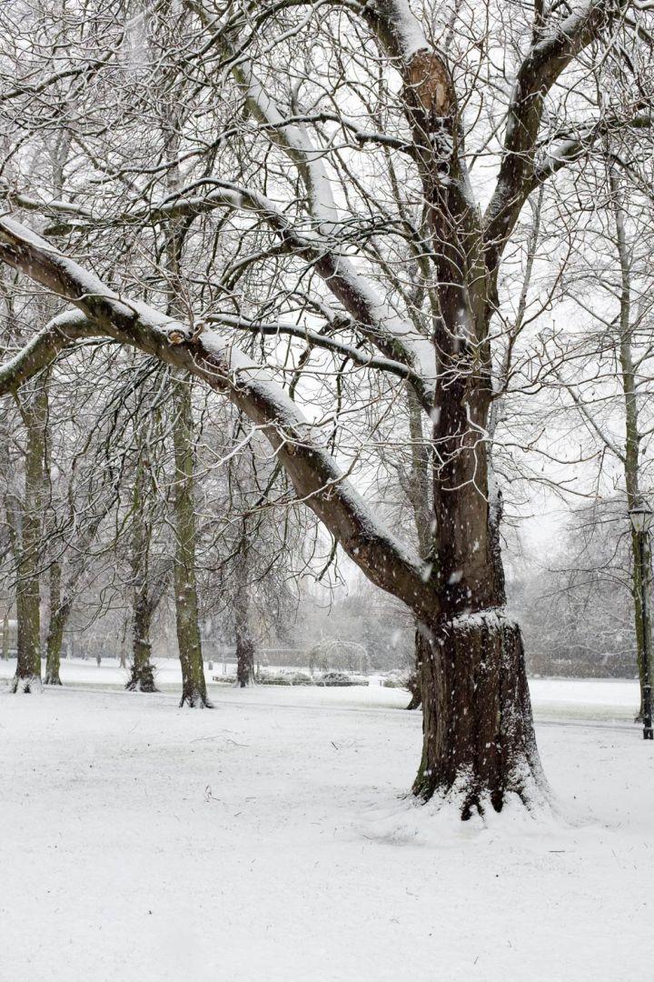 Cambridge in the snow on 10 December 2017