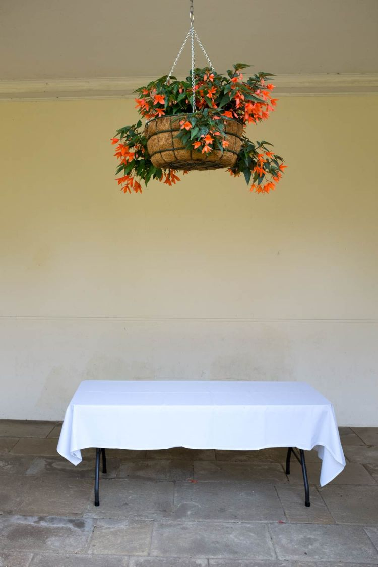 flower basket and tablecloth