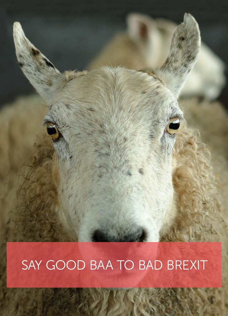 Ewe saying say good baa to bad Brexit