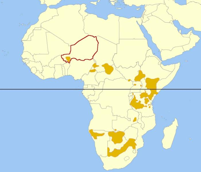 Map of African Giraffe distribution showing Niger highlighted and the location of the West African Giraffe population